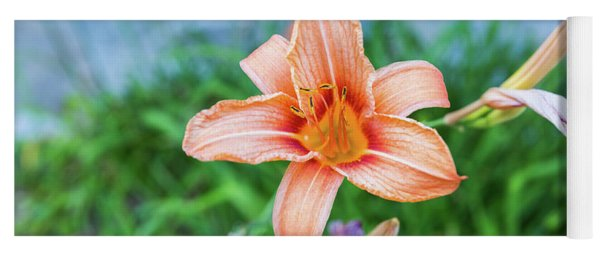 Orange Daylily Yoga Mat