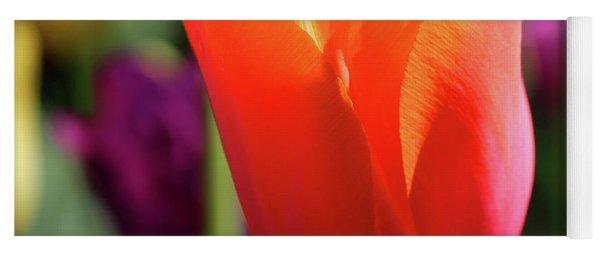 Orange Tulip Square Yoga Mat