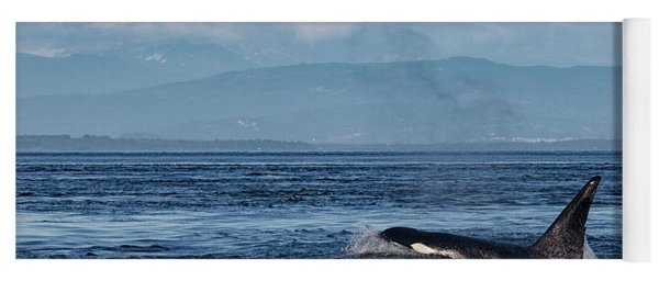 Orca Male With Mt Baker Yoga Mat