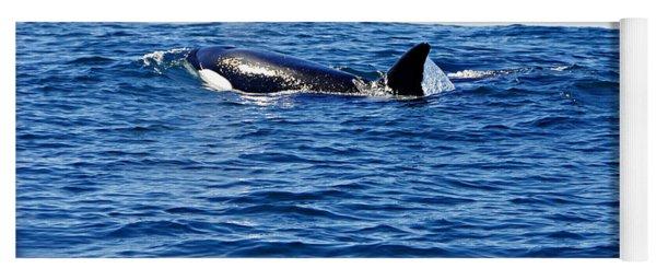 Orca Yoga Mat