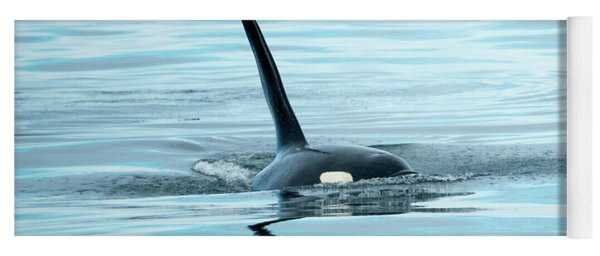 Orca Reflections Yoga Mat