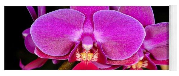 Orchid 422 Yoga Mat