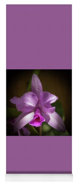 Orchid In The Shadows Yoga Mat