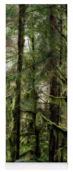 Oregon Old Growth Coastal Forest Yoga Mat