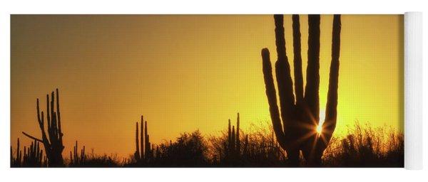 Organ Pipe Cactus Yoga Mat