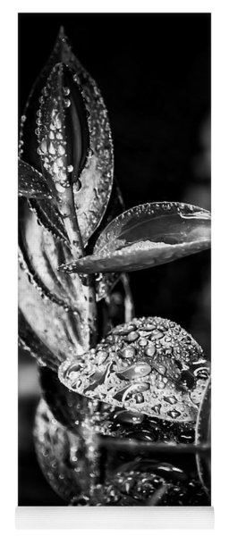 Oriental Lily Kissed By Rainfall - Black And White Yoga Mat