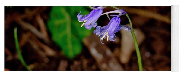 Orphaned Bluebells. Yoga Mat
