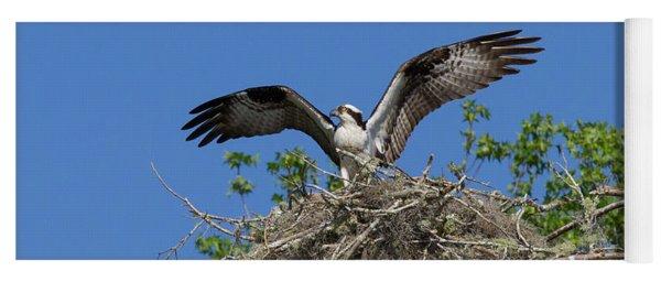 Osprey On Nest Wings Held High Yoga Mat
