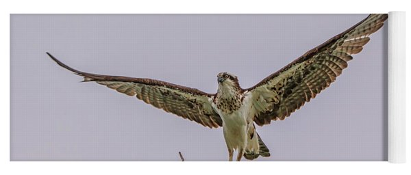 Osprey Take Off Yoga Mat