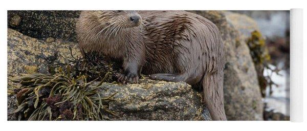 Otter Beside Loch Yoga Mat