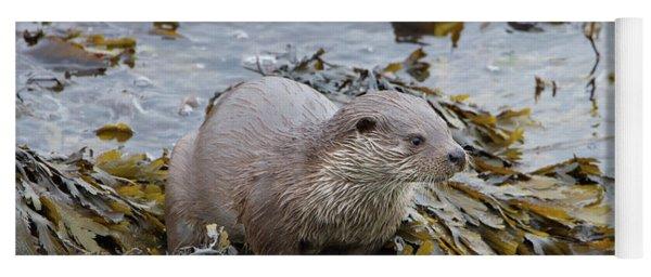 Otter On Seaweed Yoga Mat
