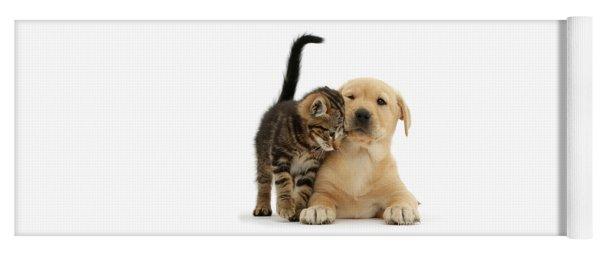 Over Friendly Kitten Yoga Mat