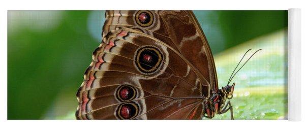 Owl Butterfly Yoga Mat
