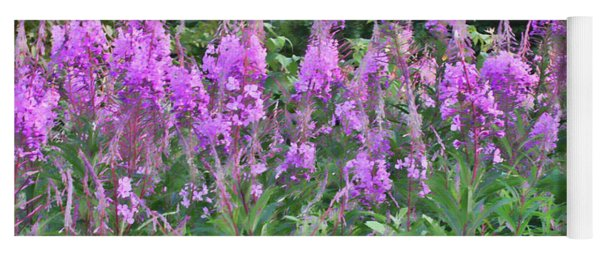 Painted Fireweed Yoga Mat