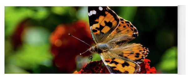 Painted Lady Butterfly Yoga Mat