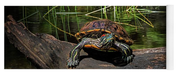 Painted Turtle Sunning Itself On A Log Yoga Mat