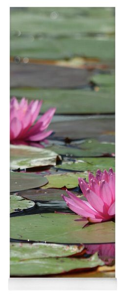 Pair Of Pink Pond Lilies Yoga Mat