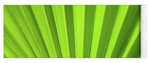 Palm Leaf Abstract Yoga Mat