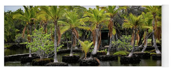 Yoga Mat featuring the photograph Palm Tree Islands by Pamela Walton