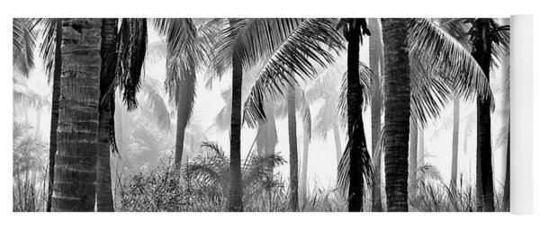 Palm Trees - Black And White Yoga Mat