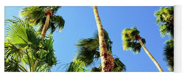 Palm Trees Looking Up Yoga Mat