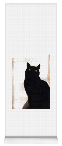 Panther The British Shorthair Cat Yoga Mat