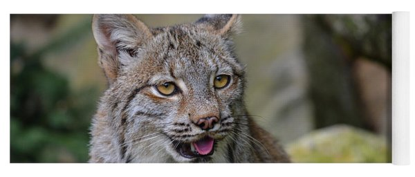 Panting Lynx Yoga Mat