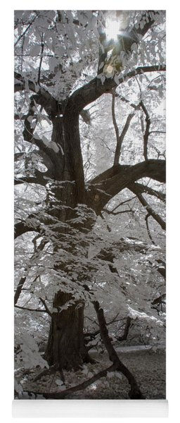 Paper Mulberry In Infrared Yoga Mat