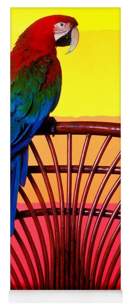 Parrot Sitting On Chair Yoga Mat