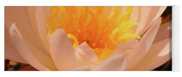 Pastel Pleasures  Yoga Mat