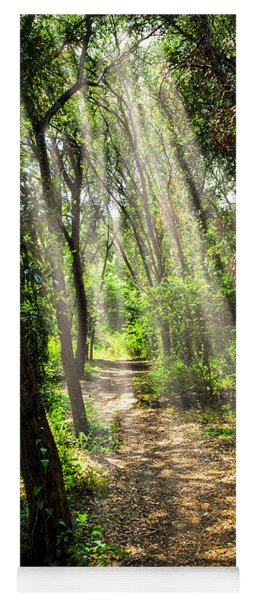Path In Sunlit Forest Yoga Mat