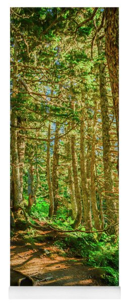 Path In The Trees Yoga Mat