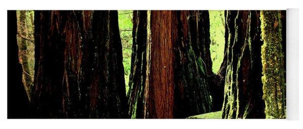 Path Through The Forest Edge . 7d5432 Yoga Mat