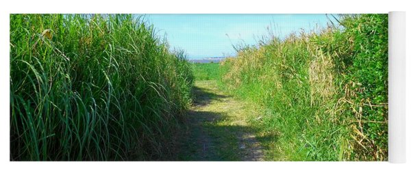 Pathway To Laguna De Bay Lake Yoga Mat