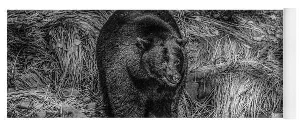 Patient Black Bear Yoga Mat