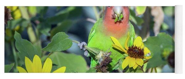 Peach-faced Lovebird 092517-5898-1cr Yoga Mat