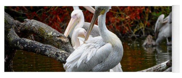 Pelicans Yoga Mat