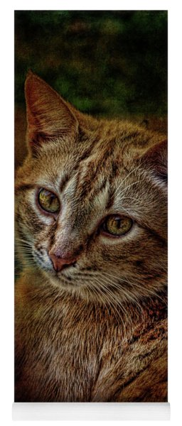 Pets Fat Cat Portrait 2 Yoga Mat