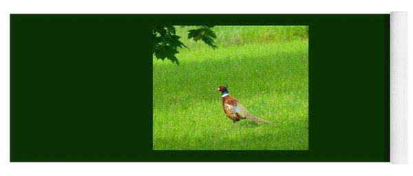 Pheasant In The Pasture Yoga Mat