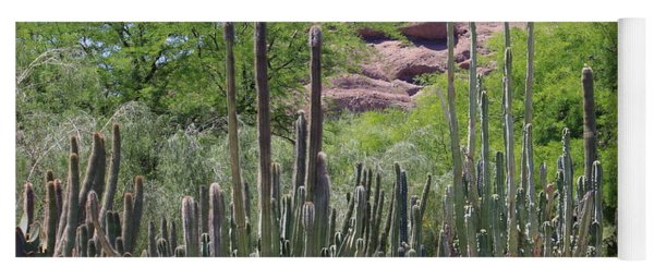 Phoenix Botanical Garden Yoga Mat