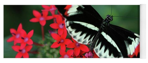 Piano Key Butterfly Yoga Mat