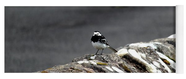 Pied Wagtail Yoga Mat