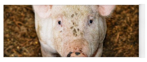 Pig Yoga Mat