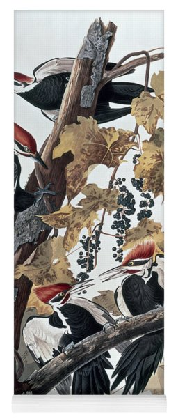 Pileated Woodpeckers Yoga Mat
