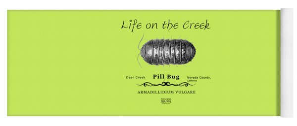 Pill Bug Armadillidium Vulgare Yoga Mat