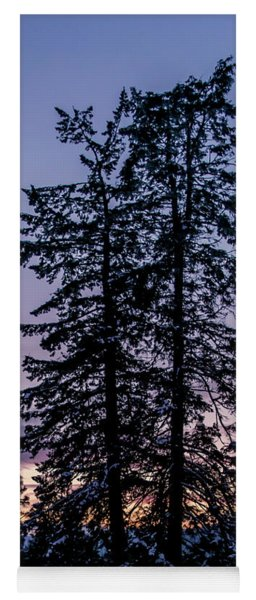 Pine Tree Silhouette    Yoga Mat