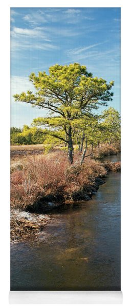 Yoga Mat featuring the photograph Pinelands Water Way by Kristia Adams