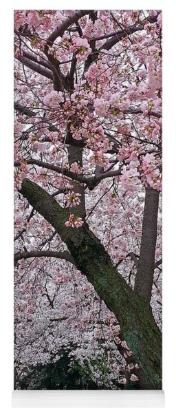 Pink And White Cherry Blossoms Yoga Mat