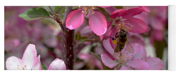 Pink Blossoms With Bee Yoga Mat