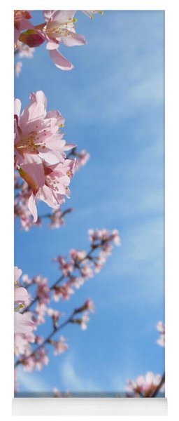 Pink Cherry Blossoms Branching Up To The Sky Yoga Mat